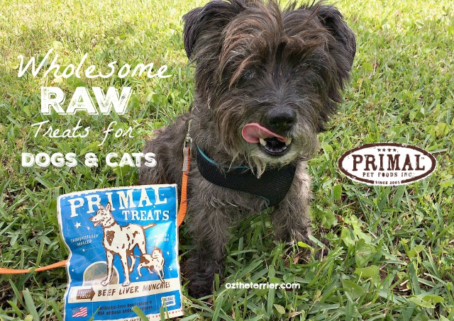 Primal Pet Foods Wholesome Raw Treats for dogs and cats