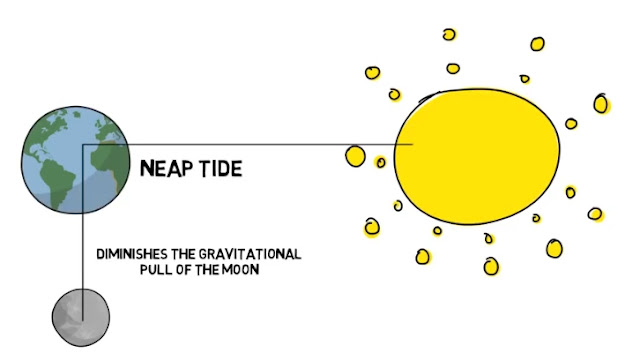 neap tide | lower tide in ocean