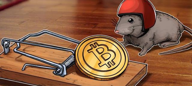 Thị trường Bitcoin mất cân bằng – nhà đầu tư sẵn sàng đón nhận rủi ro cao