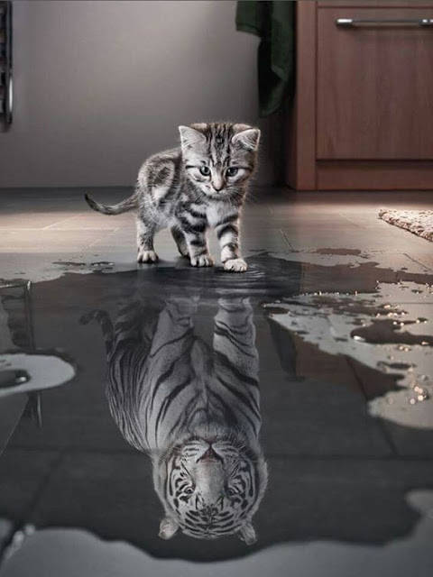 How you see yourself, is all that matters!