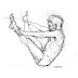 Mat Pilates: Um Guia Interativo