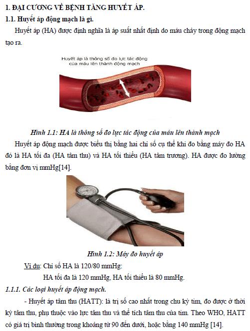Dinh dưỡng trong dự phòng và điều trị bệnh tăng huyết áp ở người trưởng thành