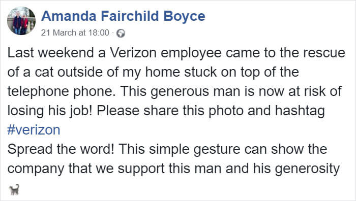 Verizon Suspended A Worker Who Rescued A Cat Using His Work Equipment