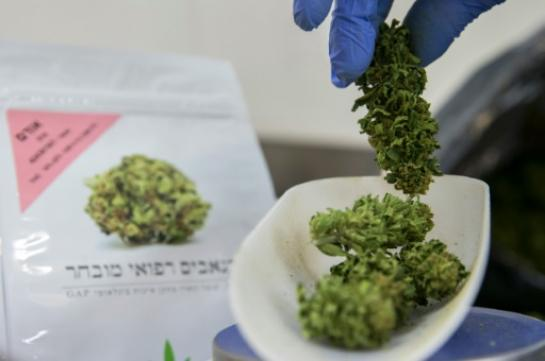 Israel takes seriously the cannabis therapeutic