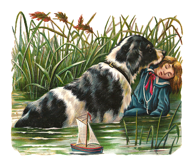 http://3.bp.blogspot.com/-uspf_6ZzJbU/UmbdXHu-SuI/AAAAAAAARjY/qabMULhlwbM/s640/dog_saving_boy_drowningpng.png