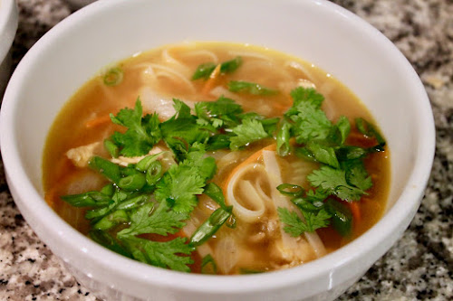 Vaguely Southeast Asian Turkey-Noodle Soup