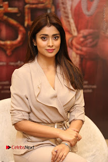 Actress Shriya Saran Stills in Stylish Dress at Gautamiputra Satakarni Team Press Meet  0122.JPG