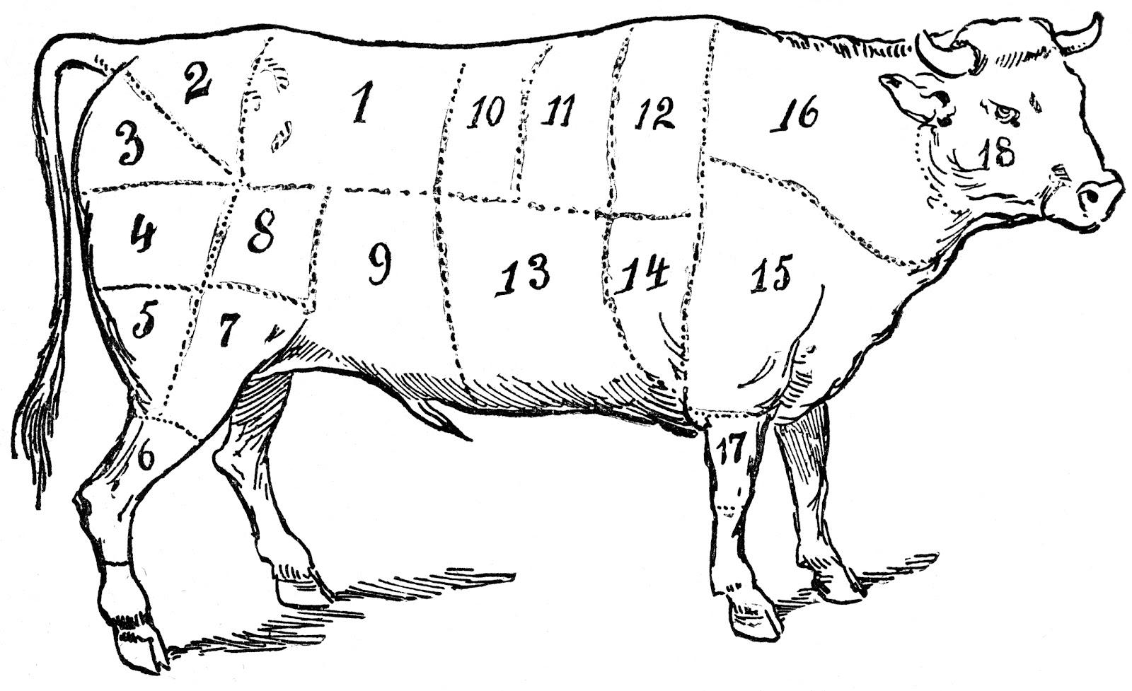 Beef Cow Cut Diagram 7 Wire Trailer Fridaynightdinnerbox Recipe Gulaschsuppe Mit Zwiebelbrot