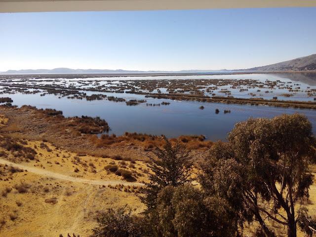 Lago Titicaca desde Isla Esteves, Perú