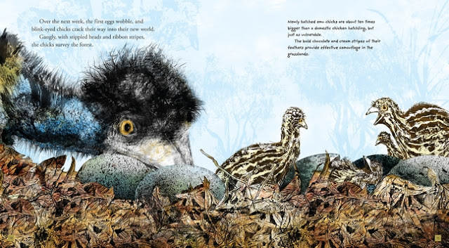 http://www.candlewick.com/bookxtras.asp?isbn=0763674796&id=&browse=Author&view=sprd&sprd=./images/cwp_spreads/648/0763674796.int.2.jpg&bktitle=Emu