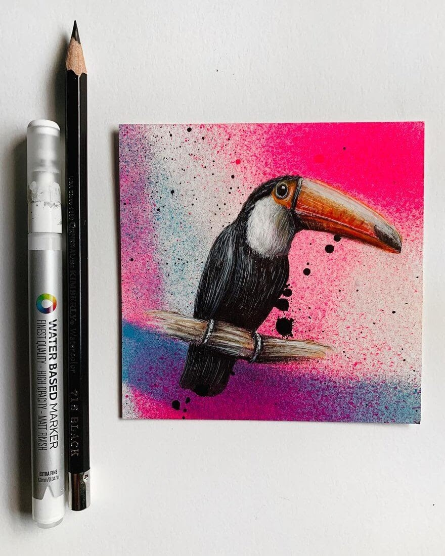 05-Toucan-Mixed-Media-Jonathan-Martinez-Animal-Drawings-with-Colored-Pencils-www-designstack-co