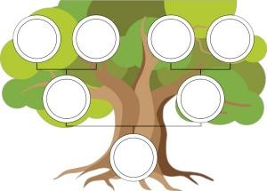 Soy Ağacı Nedir?
