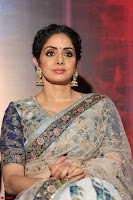 Sri Devi in designer saree stunning beauty at the launch of MOM movie Trailer~  Exclusive 109.JPG