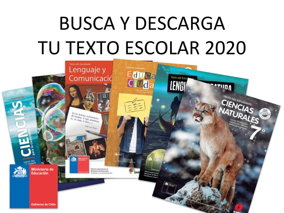 Textos escolares 2020