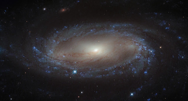 The IC 2560 Galaxy