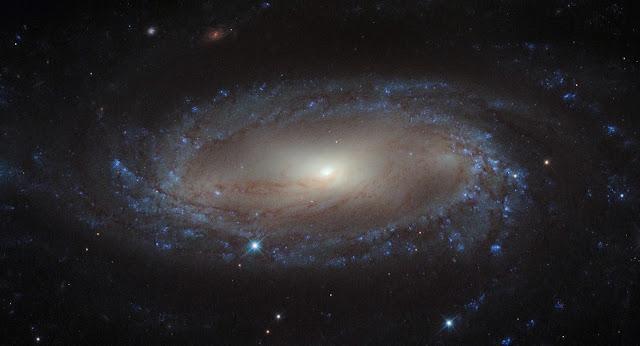 The IC 2560 Galaxy