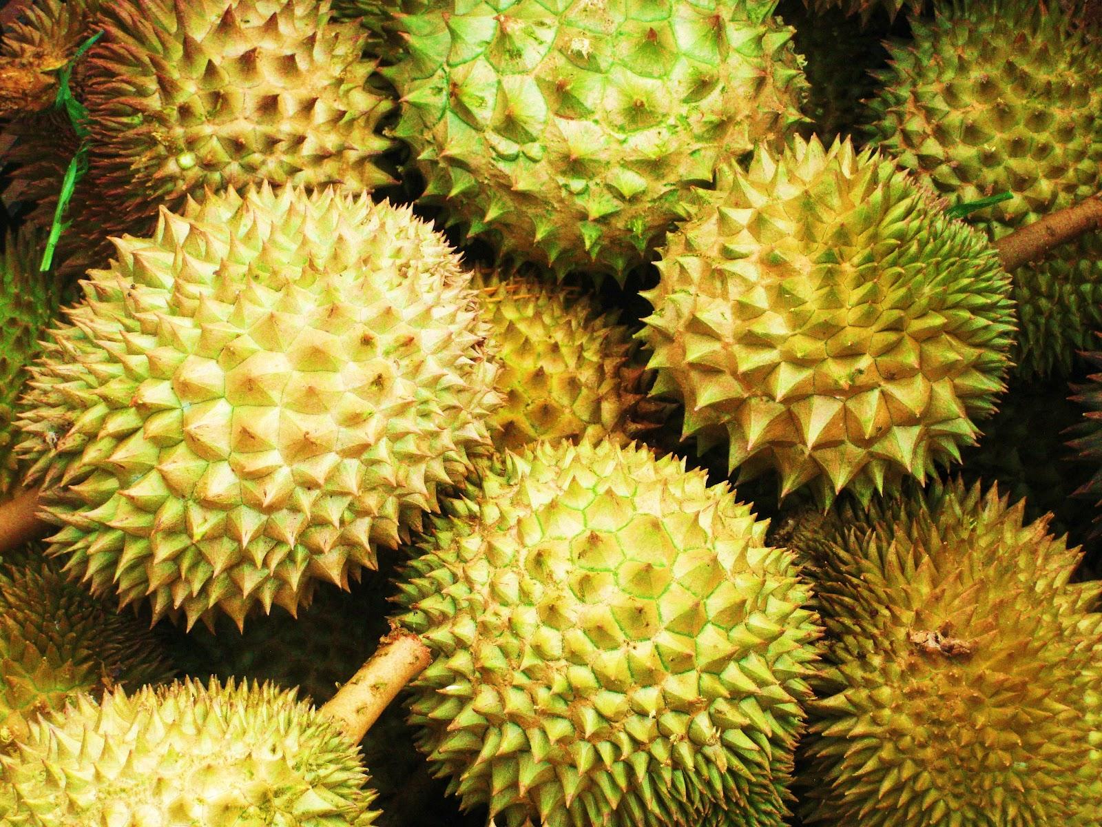 The Global Gamine Durian Tasting