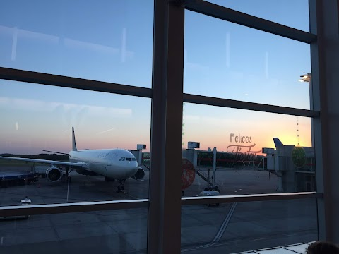 『Diario de viaje #1』Ida a Japón con Delta y Airbnb drama!