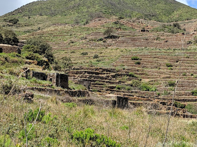 Pian Ghirlanda terracing on the side of Monte Gibele in Pantelleria.