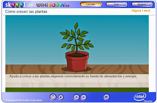 http://wikisaber.es/Contenidos/LObjects/how_plants_grow/index.html