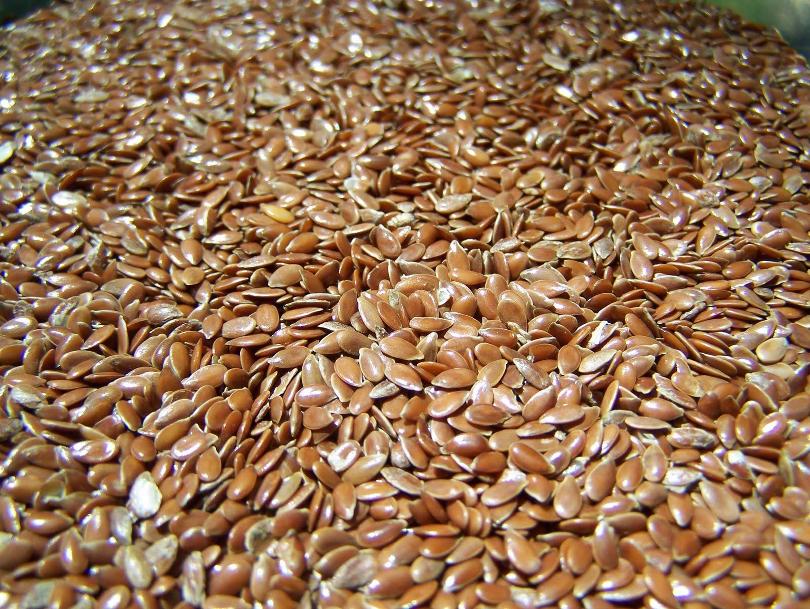 смешать как добываются семена льна фото прядь виска заплести