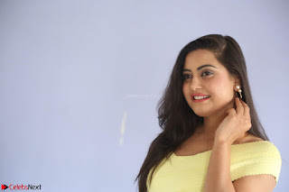 Shipra gaur in V Neck short Yellow Dress ~  062.JPG