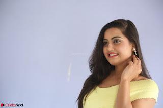 Shipra gaur in V Neck short Yellow Dress ~  062.JPG