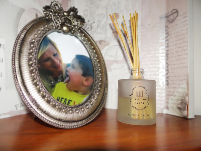 Landon Tyler Reed Diffusers