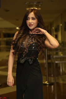 Angela Krislinzki in Transparent Black Gown at Rogue Movie Teaser Launch 1st March 2017 031.JPG