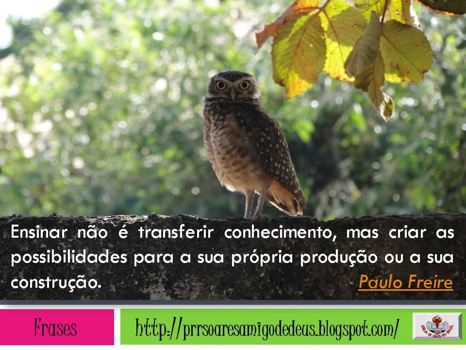 Prrsoares 18 Frases Sobre Educação De Paulo Freire