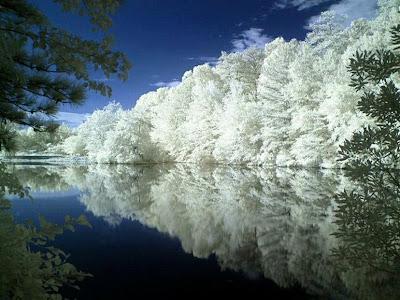 cermin alam cerminan diri