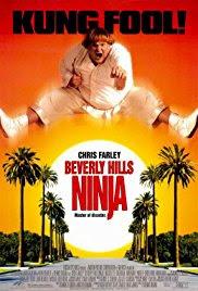 Ver Un ninja en Beverly Hills (1997) Gratis Online