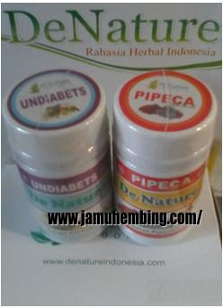 BELI OBAT DIABETES HERBAL DE NATURE