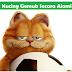 Vitamin Agar Kucing Gemuk (Penambah Nafsu Makan)