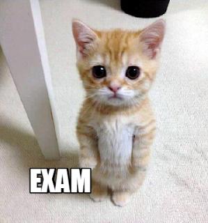 exam-dp