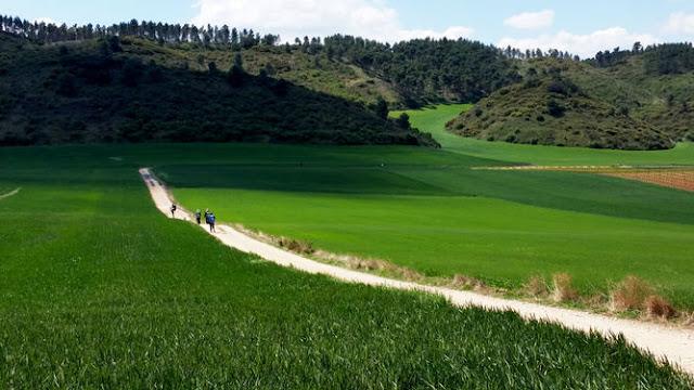 Caminho de Santiago de Compostela - Projeto Caminhos Peregrinos