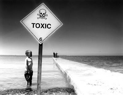 Holistic Health Information Environmental Toxicity