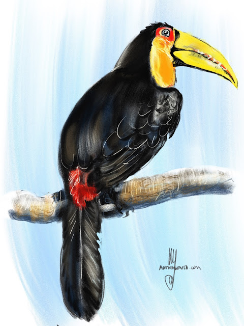 Red-breasted toucan Bird painting by Ulf Artmagenta