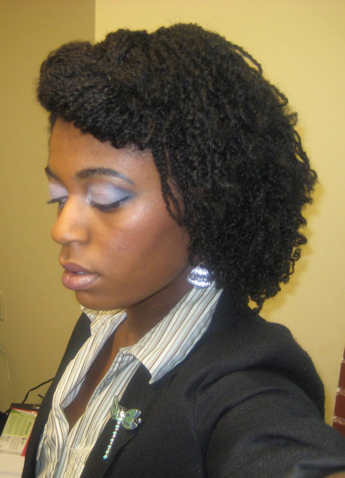 1000 Images About Natural Hair Mini Twists On Pinterest