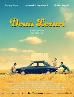 Ver Doua lozuri (Dos billetes de lotería) (2016) Gratis Online