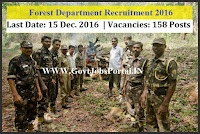 HP Forest recruitment 2017