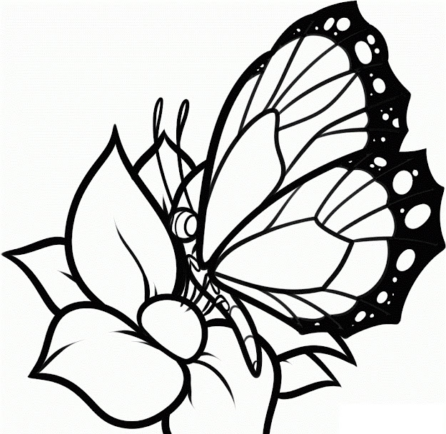 Download Coloring Pages Coloring Pages Butterfly Spring Butterfly Coloring  Page Archives Coloring Page For Kids