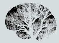 Image of tree branches superimposed on a brain representing neuroplasticity as taught in Dr. Danielle Rosenman's online group and in-person groups