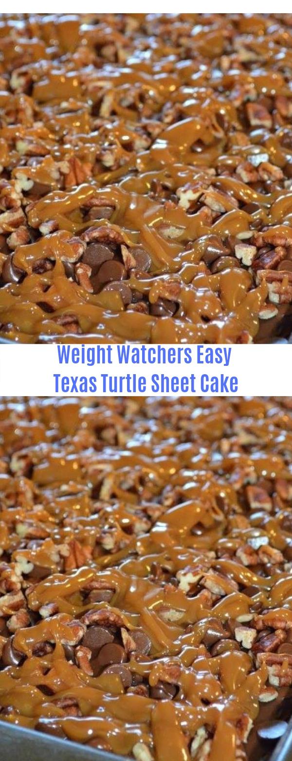 Weight Watchers Easy Texas Turtle Sheet Cake
