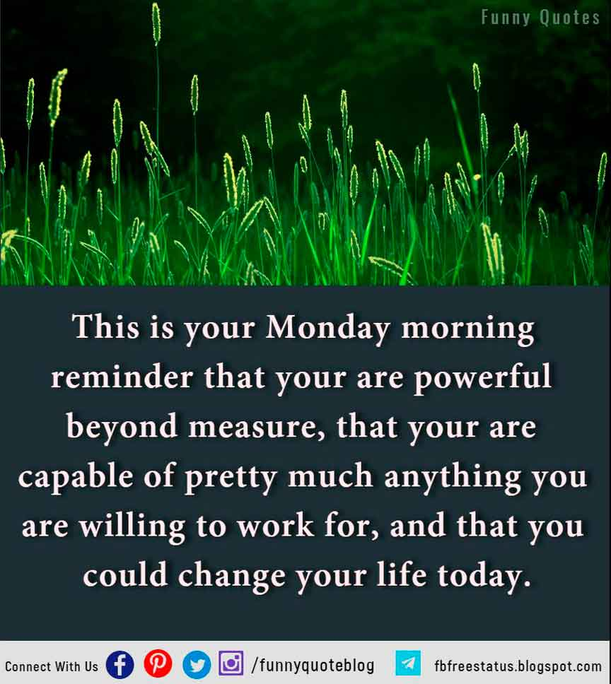 This is your Monday morning reminder that your are powerful beyond measure, that your are capable of pretty much anything you are willing to work for, and that you could change your life today.