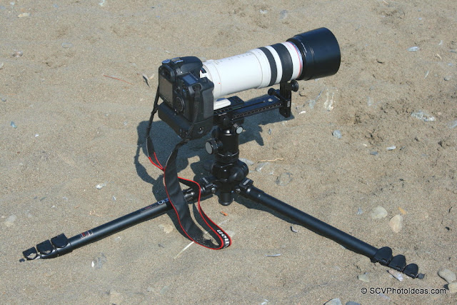 Canon EOS50D+BD-E2N+EF100-400L-IS-USM on Hejnar LLSB an Benro A-298EX tripod