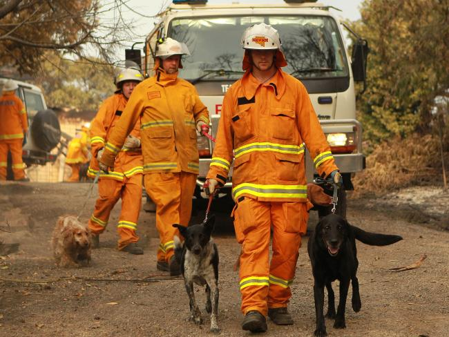 Firemen saving dogs from Tea Tree Gully Kennels during 2016 Adelaide Bushfires