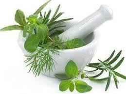 Obat Herbal Kemaluan gatal dan terasa panas perih saat kencing