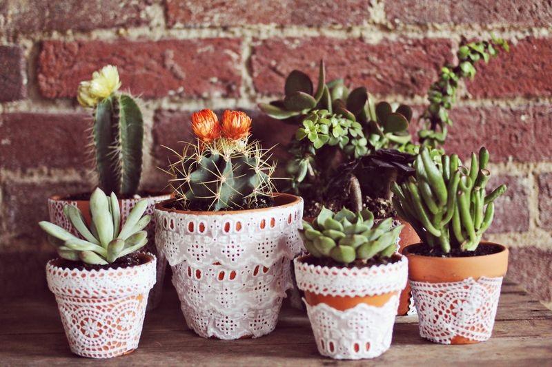 DIY Lace planters