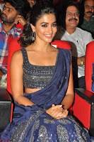 Pooja Hegde choli saree at DJ Duvvada Jaggannadham music launch ~  Exclusive 27.jpg